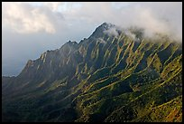 Lush Hills above Kalalau Valley, seen from the Pihea Trail, late afternoon. Kauai island, Hawaii, USA