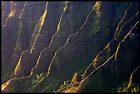 Ridges, Kalalau Valley, sunset. Kauai island, Hawaii, USA ( color)