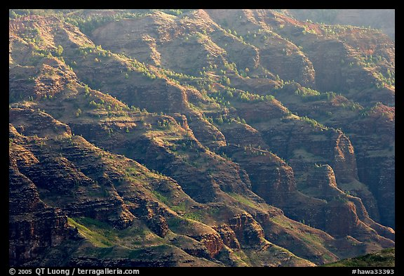 Ridges, lower Waimea Canyon, early morning. Kauai island, Hawaii, USA