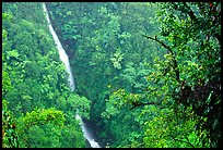 Kahuna Falls. Akaka Falls State Park, Big Island, Hawaii, USA ( color)