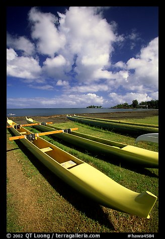 Outtrigger canoes on  beach,  Hilo. Big Island, Hawaii, USA