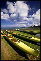 Outtrigger canoes on  beach,  Hilo. Big Island, Hawaii, USA ( color)