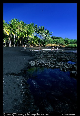 Beach of basalt black sand  at Punaluu. Big Island, Hawaii, USA (color)