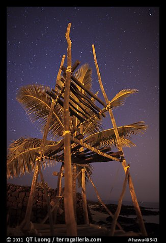 Altar and palm tree at night, Kaloko-Honokohau National Historical Park. Big Island, Hawaii, USA (color)