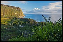 Waipio Valley and Ocean at sunrise. Big Island, Hawaii, USA (color)