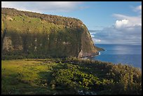 Steep valley walls, Waipio Valley. Big Island, Hawaii, USA ( color)