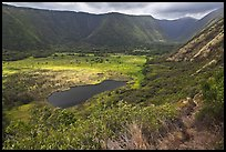 Waipio Valley. Big Island, Hawaii, USA ( color)