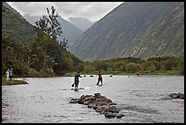Men paddleboarding on river, Waipio Valley. Big Island, Hawaii, USA
