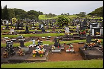 Japanese graves, Hilo. Big Island, Hawaii, USA ( color)
