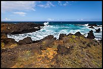 Grasses and volcanic shore, South Point. Big Island, Hawaii, USA ( color)
