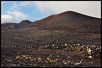 Cinder cones. Mauna Kea, Big Island, Hawaii, USA (color)