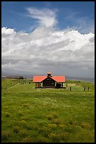 Rural building with bright red roof in ranchland. Big Island, Hawaii, USA (color)