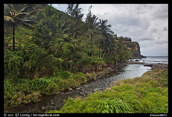 Honokohau creek and coast. Maui, Hawaii, USA (color)