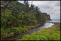 Honokohau creek and coast. Maui, Hawaii, USA ( color)