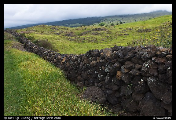 Long lava rock wall and pastures. Maui, Hawaii, USA (color)