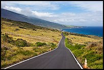 Road across arid landscape. Maui, Hawaii, USA ( color)