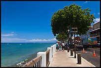 Waterfront promenade. Lahaina, Maui, Hawaii, USA ( color)