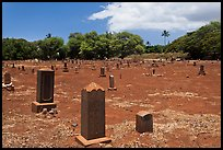 Japanese cemetery. Lahaina, Maui, Hawaii, USA ( color)