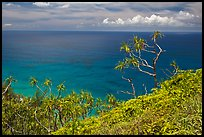 Ocean view from Kalalau trail. Kauai island, Hawaii, USA (color)