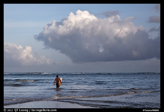 Surfer heading out in ocean. Kauai island, Hawaii, USA (color)