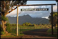 Princeville Ranch gate. Kauai island, Hawaii, USA ( color)