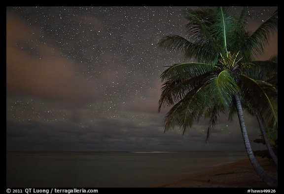 Palm tree, stars and ocean. Kauai island, Hawaii, USA