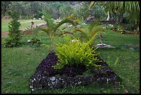 Tomb made of lava rock, Hanalei Valley. Kauai island, Hawaii, USA (color)