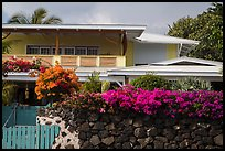Residence with tropical flowers, Kailua-Kona. Hawaii, USA (color)