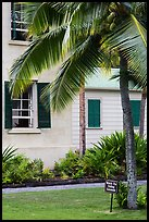 Hulihee Palace detail with coconut tree, Kailua-Kona. Hawaii, USA (color)