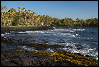 Punaluu beach. Big Island, Hawaii, USA (color)