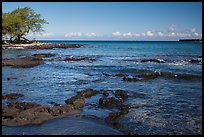Rocks with bird in distance, Kiholo Bay. Big Island, Hawaii, USA ( color)