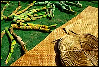 Pandanus leaves and a finished toga (mat) made out of it. American Samoa