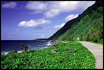 The road between Fitiuta and Luma. American Samoa (color)