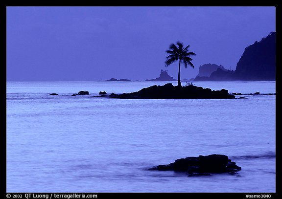 Lone coconut tree on a islet in Leone Bay, dusk. Tutuila, American Samoa