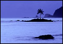 Lone coconut tree on a islet in Leone Bay, dusk. Tutuila, American Samoa (color)
