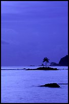 Coconut tree on islet in Leone Bay, dusk. Tutuila, American Samoa