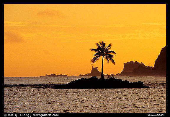 Lone coconut tree on a islet in Leone Bay, sunset. Tutuila, American Samoa (color)