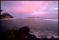 Sunset over Aunuu island with crab on basalt rock. Aunuu Island, American Samoa