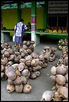 Coconuts at a fruit stand in Iliili. Tutuila, American Samoa (color)