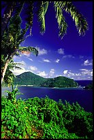 View over Masefau Bay. Tutuila, American Samoa ( color)