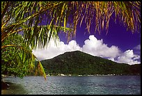 Masefau Bay and Village. Tutuila, American Samoa ( color)