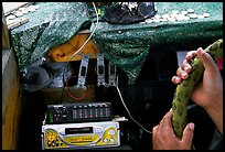 Hands of Aiga bus driver and sound system. Pago Pago, Tutuila, American Samoa ( color)