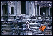 Buddhist monks on stairs, Angkor Wat. Angkor, Cambodia