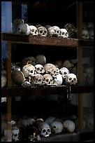Skulls of executed prisoners, Choeng Ek Killing Fields memorial. Phnom Penh, Cambodia (color)