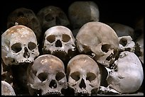 Human Skulls, Choeng Ek Killing Fields memorial. Phnom Penh, Cambodia ( color)
