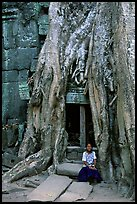 Girl sits at the base of huge bayan tree encroaching on ruins in Ta Prom. Angkor, Cambodia ( color)