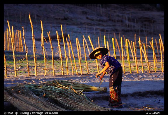 Villager and fence. Mekong river, Laos (color)