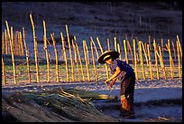 Villager and fence. Mekong river, Laos