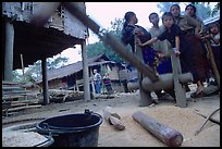 Preparation of rice in a small hamlet. Mekong river, Laos
