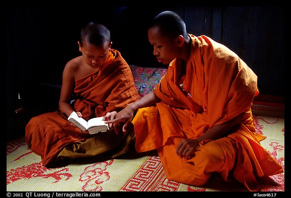 Buddhist novice monks reading. Luang Prabang, Laos (color)
